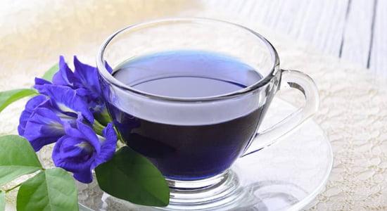 Si Biru Bunga Telang: Dari Bunga yang Cantik, Terciptalah Minuman nan Unik
